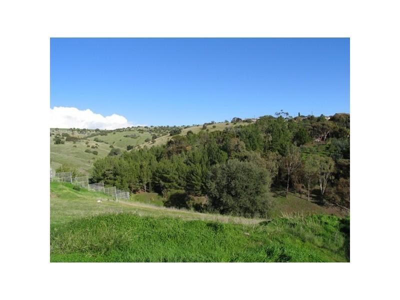 11 Spinks Road, Marino SA 5049