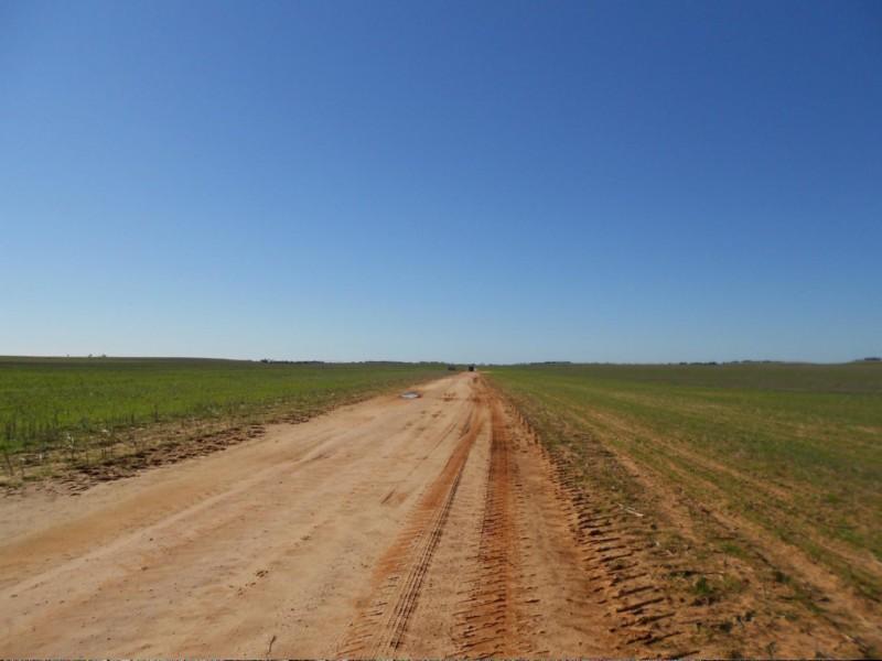 1179 Ngarkat Highway, Pinnaroo SA 5304