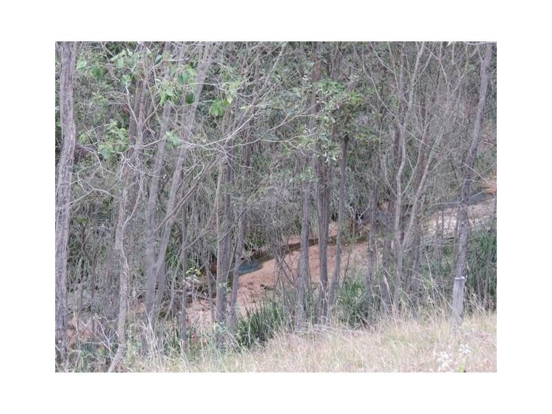 110 Seeds Road, Mount Maria QLD 4674