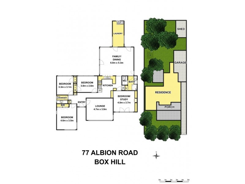 77 Albion Road, Box Hill VIC 3128 Floorplan