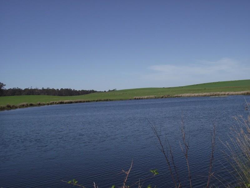 5208 Bass Highway, Deloraine TAS 7304