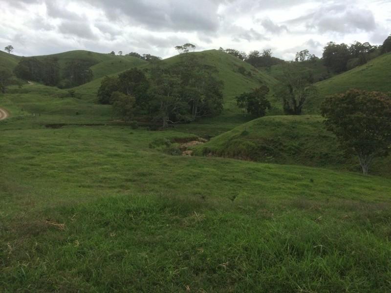 350 Upper Pinbarren Creek, Pinbarren QLD 4568