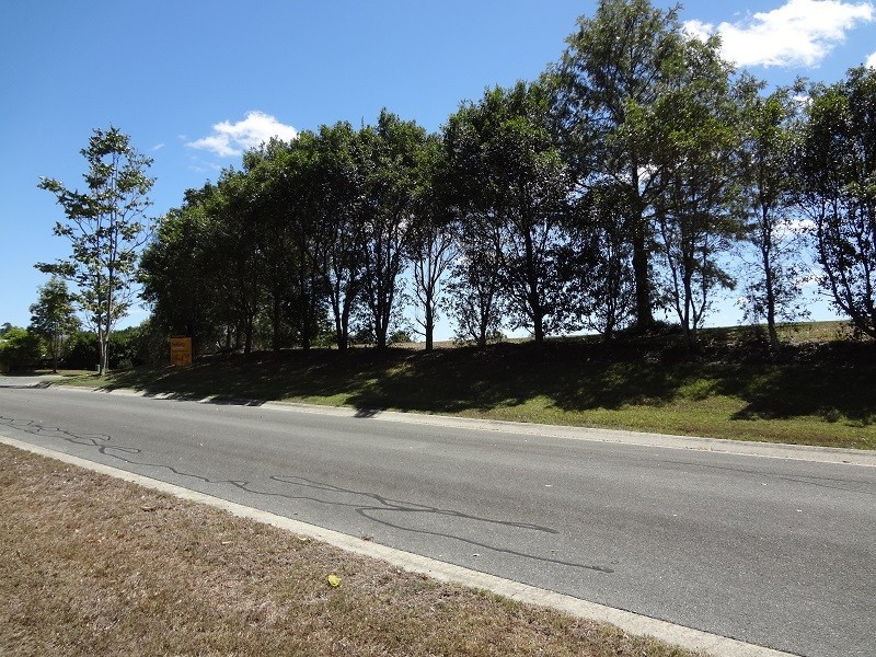 32 She Oak Close, Black Mountain QLD 4563
