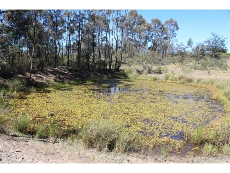 Gowan NSW 2795