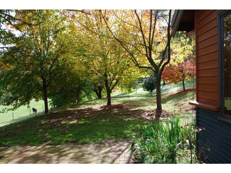 1191 Buckland Valley Road, Buckland VIC 3740