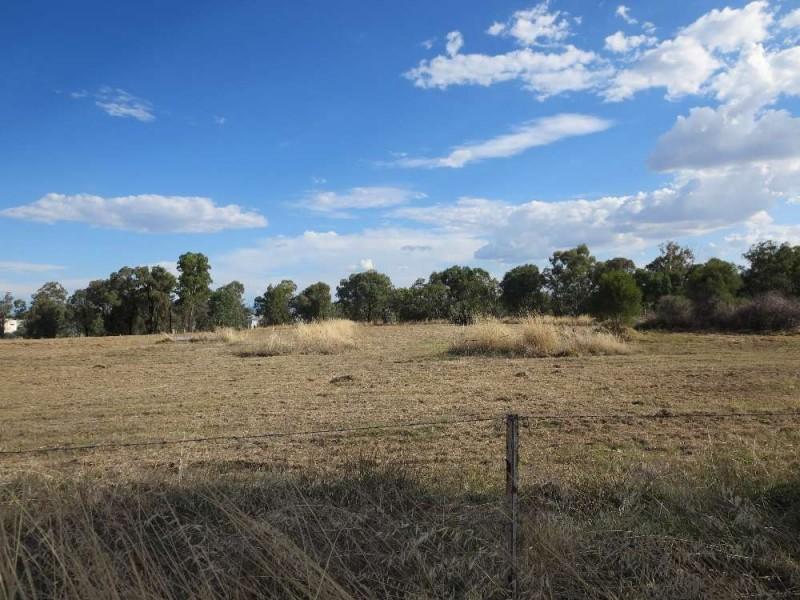 38 Hoffman Road, Thurgoona NSW 2640