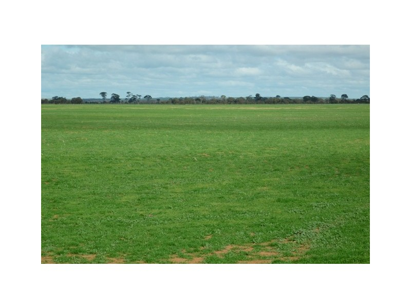 Lot 120 Neening Road, Nangeenan WA 6414