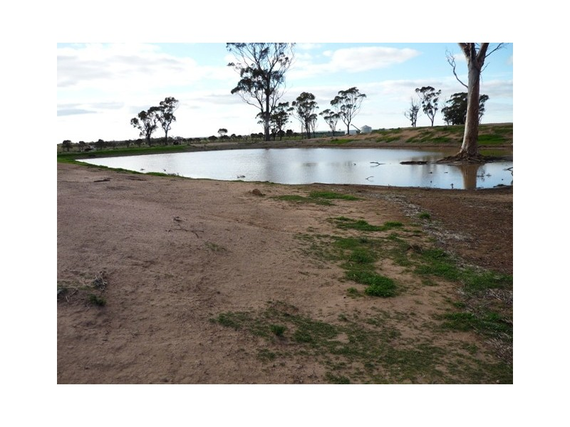 Lot 28 Goldfields Road, Nangeenan WA 6414