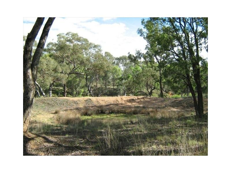Binnaway NSW 2395