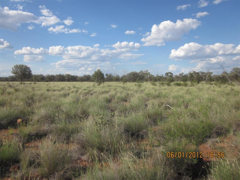 * CLOVER LAKES, Cunnamulla QLD 4490