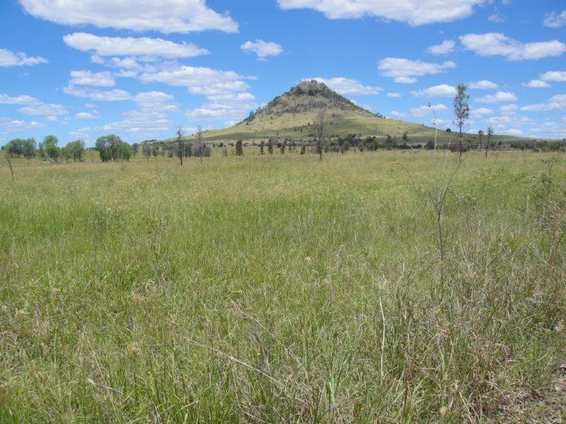 """"""" Mt Aldis """", Moura QLD 4718"""