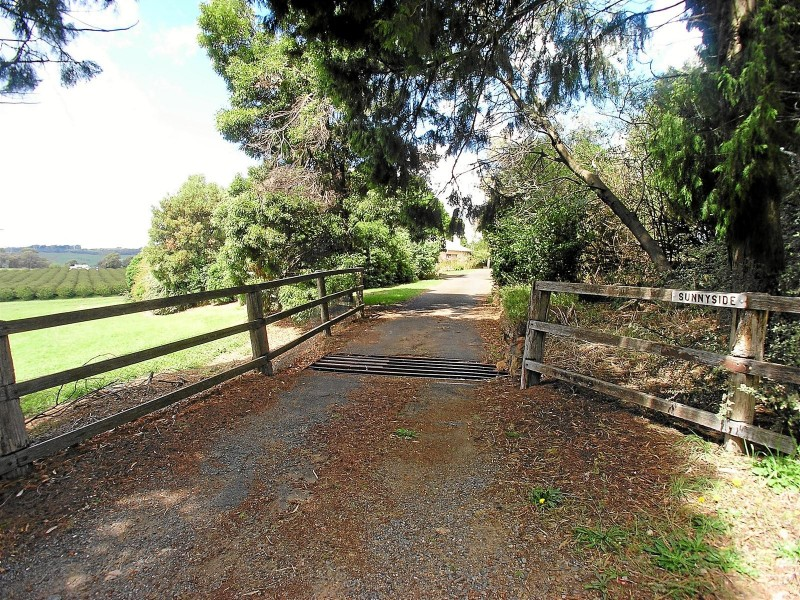 299 Nancarrow Lane, Nashdale NSW 2800