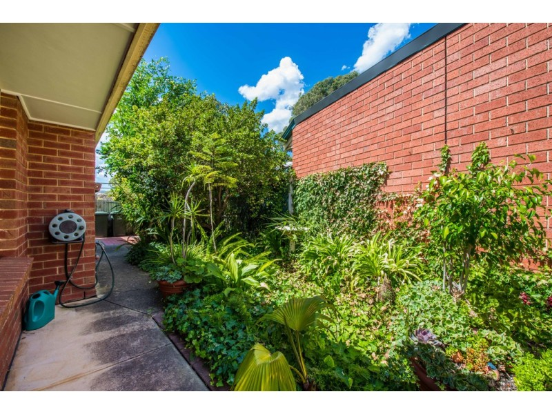 11 Songlark Grove, Flagstaff Hill SA 5159