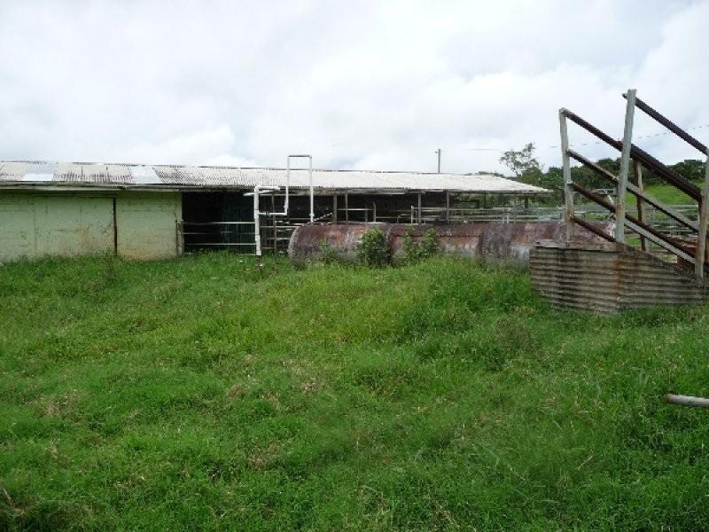 Malanda QLD 4885