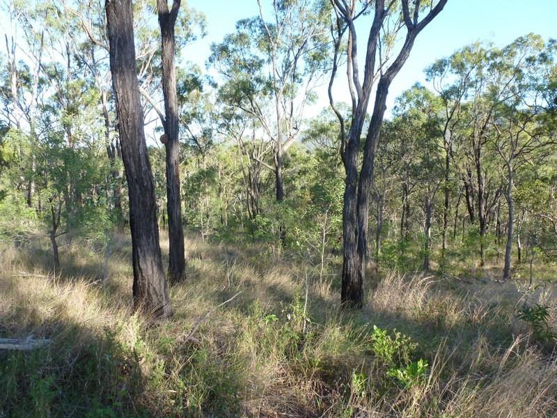 Limestone Creek QLD 4701