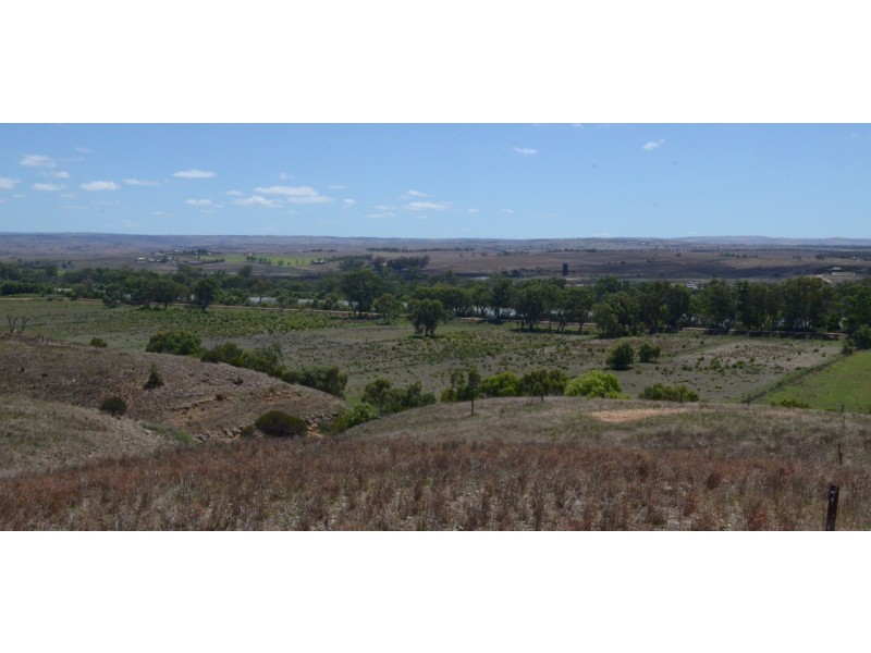 Sections 521, 524, 525 Rundle Road, Cowirra SA 5238