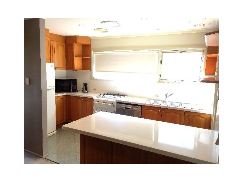 19 Curtin Crescent, Maroubra NSW 2035