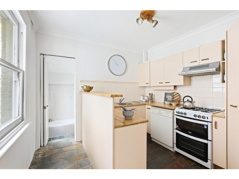45 Brighton Street, Petersham NSW 2049