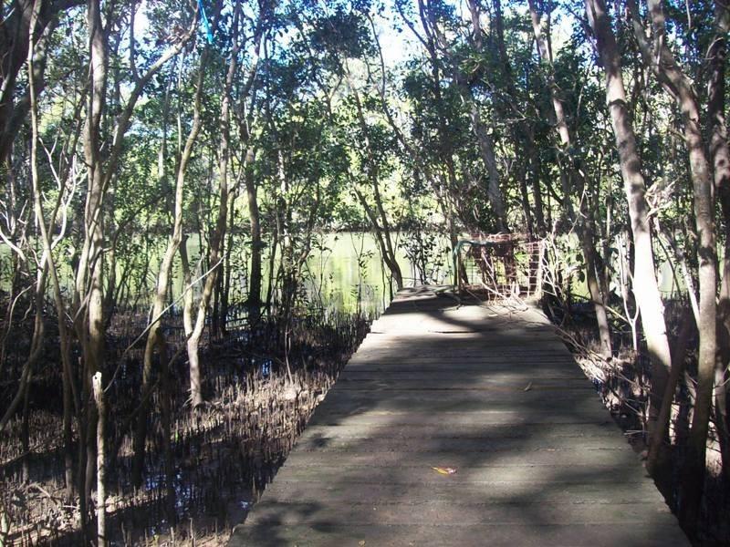 Bundaberg North QLD 4670
