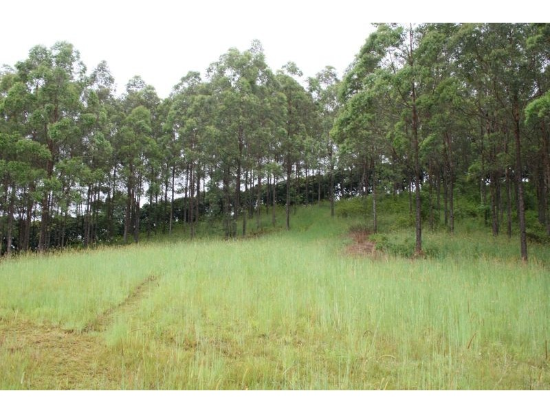 329a Cooroy Belli Creek Road, Cooroy QLD 4563