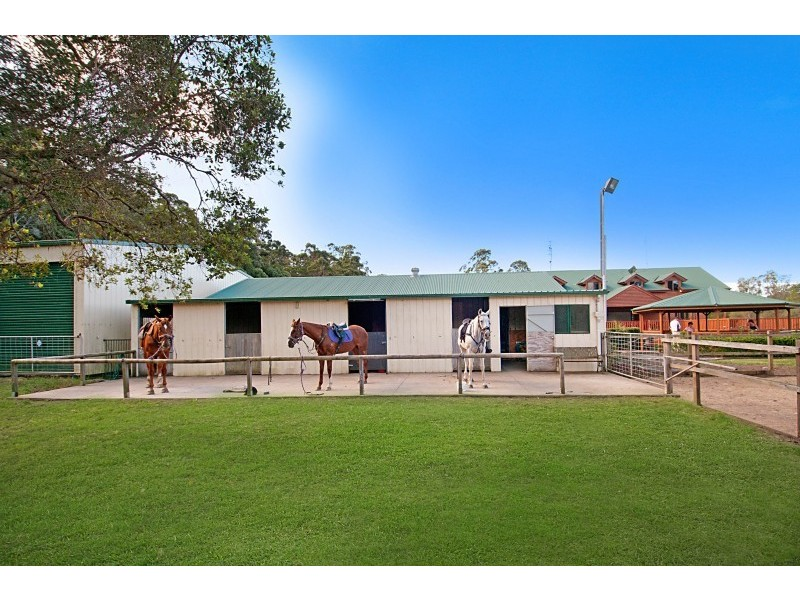 31 Hamilton Road, Cooroy QLD 4563