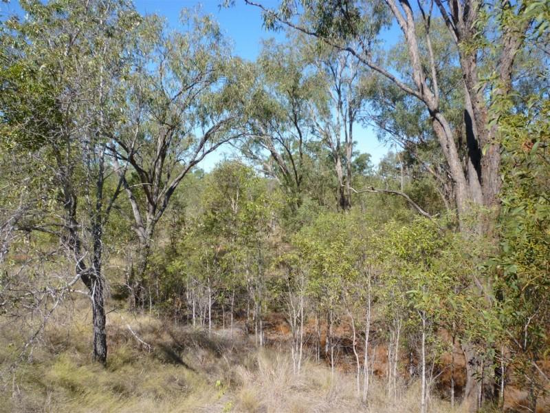 0 Capricorn Highway, Duaringa QLD 4712