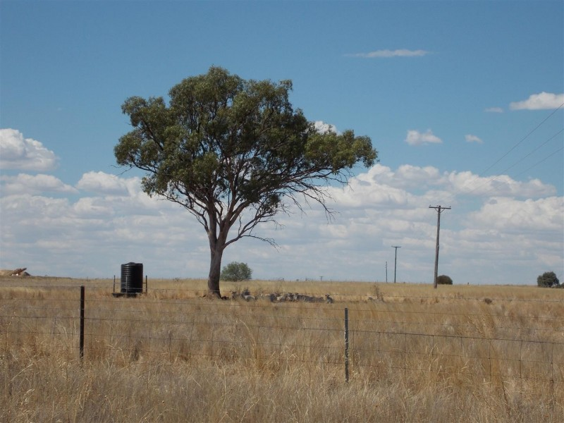 Lots 151-153 Condobolin Road, Yarrabandai NSW 2875