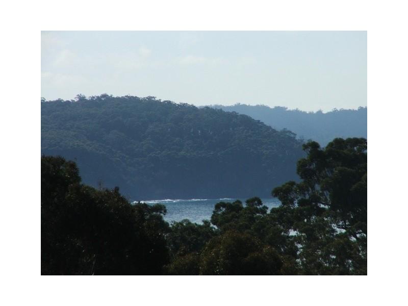 Catalina NSW 2536