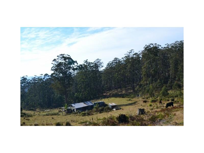 266 Costigans Road, Yarras NSW 2446