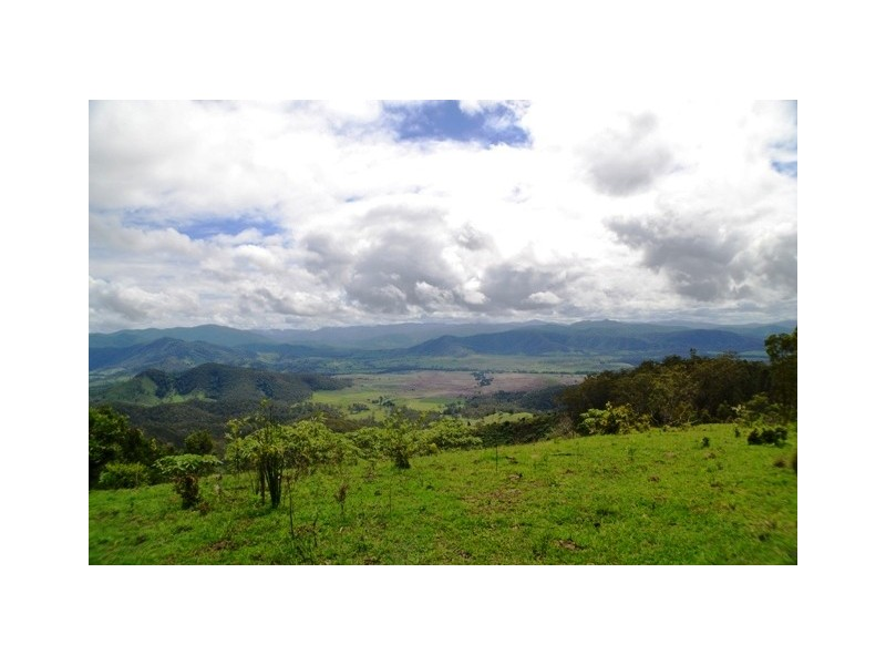 Lot 107 Costigans Road, Yarras NSW 2446