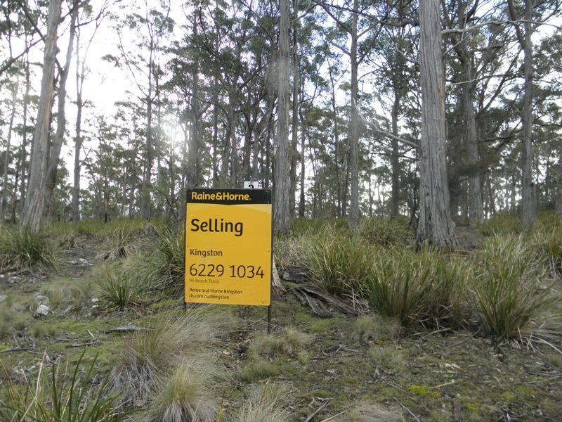 Lot 3 Apollo Bay Road, Apollo Bay TAS 7150