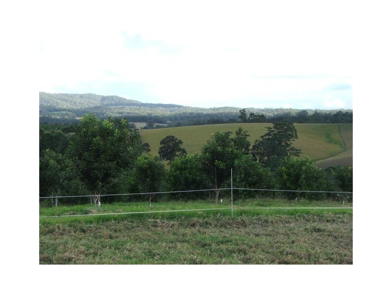 Lot 1 Wesley Avenue, Donnellyville NSW 2447