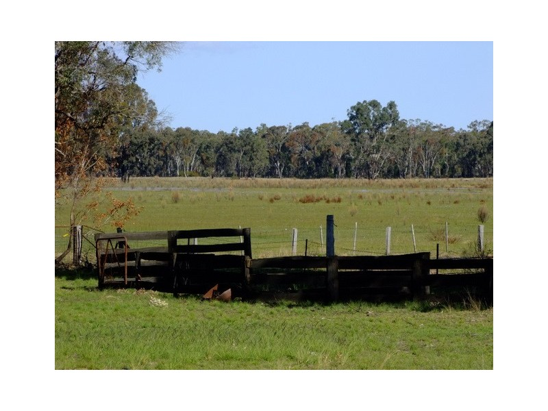 Purlewaugh NSW 2357