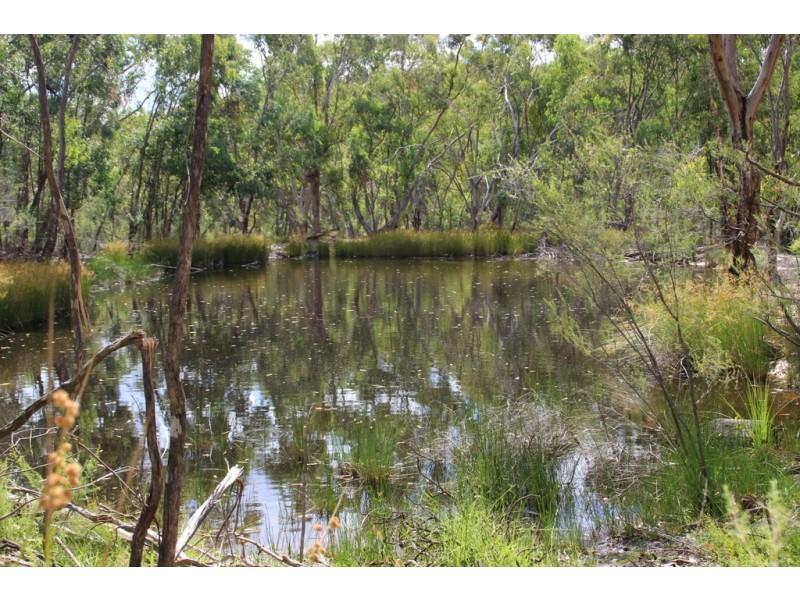 Narrawa 1464 Dandry Road, Coonabarabran NSW 2357
