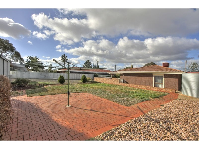 55 Borrow Street, Freeling SA 5372