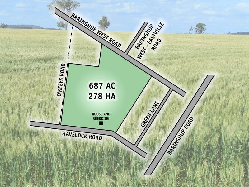 290  Havelock Road, Baringhup VIC 3463