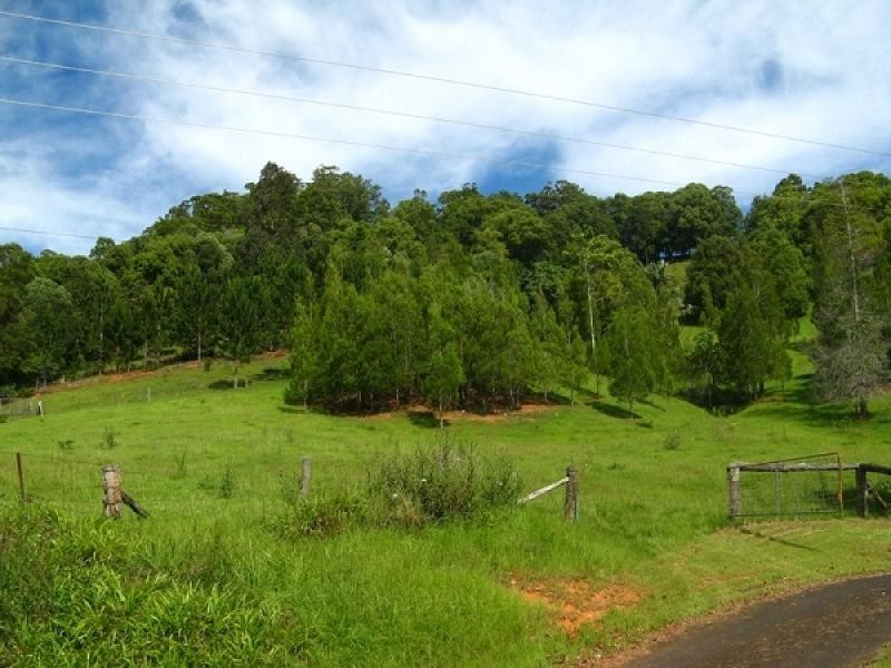 28 Glencoe Road, Murwillumbah NSW 2484