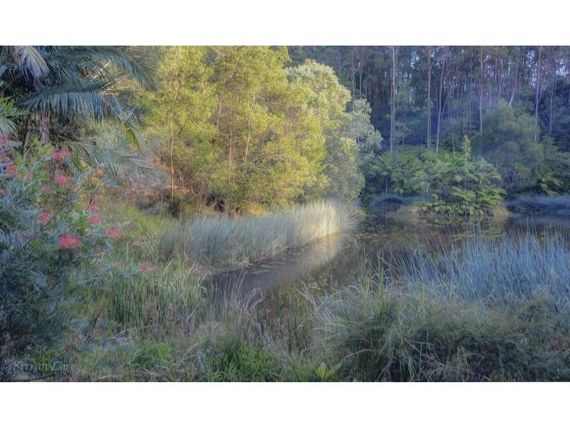 North Tumbulgum NSW 2490