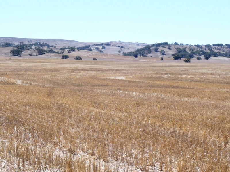* 594.69ha Bradfield 1468acs, Jamestown SA 5491