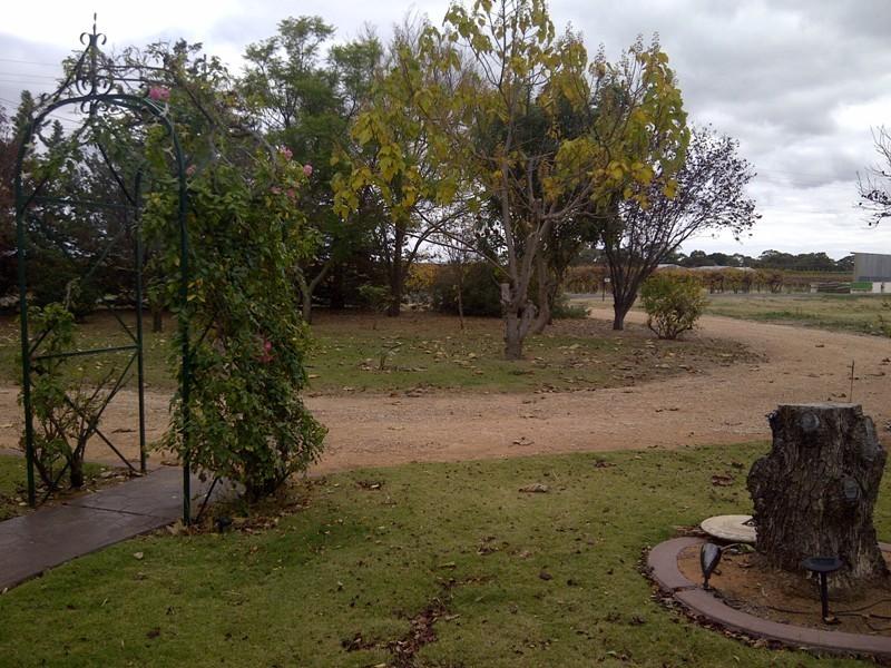 85 Gallary Terrace, Lyrup SA 5343