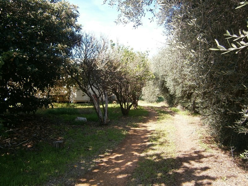 20 Crocker Road, Ramco SA 5322