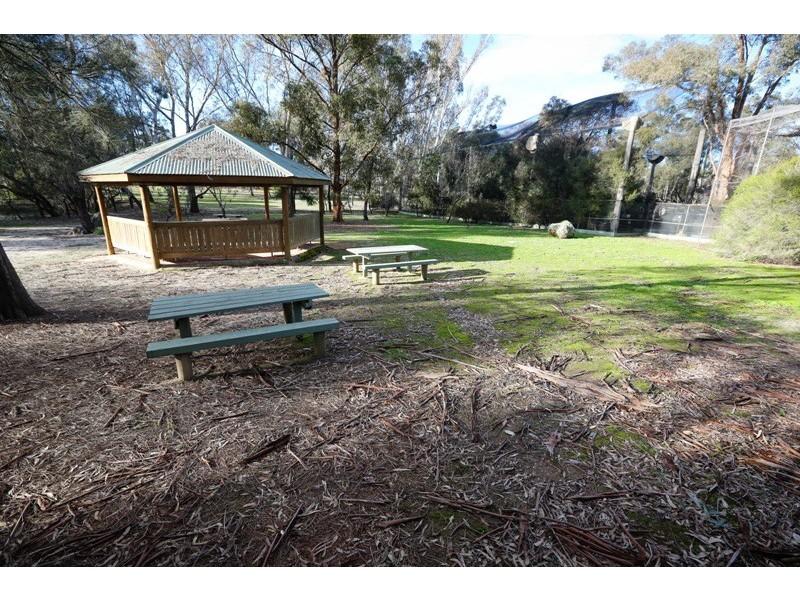 43 Sanctuary Lane, Ettamogah NSW 2640