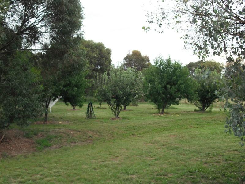 1065 Urana Road, Jindera NSW 2642