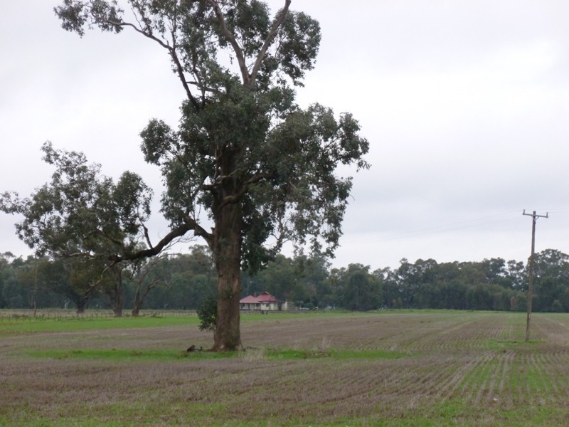 'Booralee' Back Walbundrie-Rand Road, Walbundrie NSW 2642