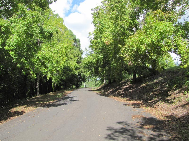 Lot 3 Teak Lane, Federal NSW 2480