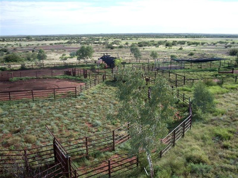 . Lasseter Highway, Alice Springs NT 0872