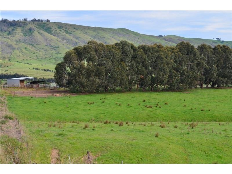 . Yaven Creek, Adelong NSW 2729
