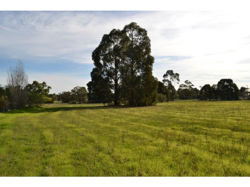 Lot 971 Sixth Avenue, Kendenup WA 6323