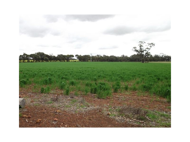 Lot 302 Albany Highway, Kendenup WA 6323