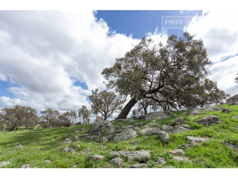 601 Gelston Park Road, Gelston Park NSW 2650